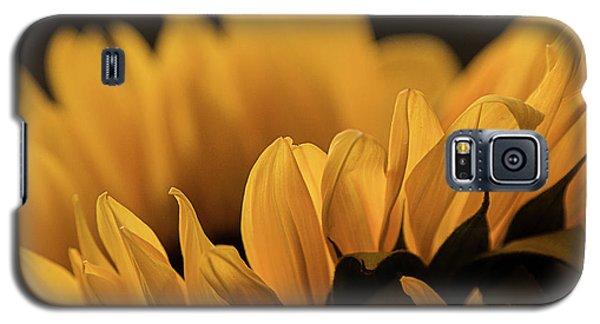 Soft Summer Light Galaxy S5 Case