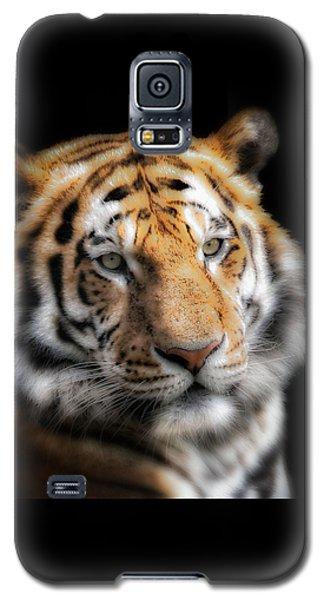 Soft Tiger Portrait Galaxy S5 Case