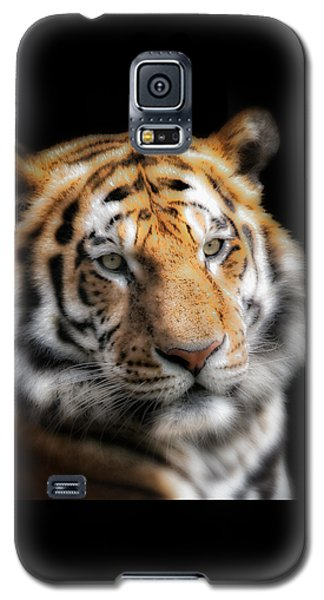 Galaxy S5 Case featuring the photograph Soft Tiger Portrait by Chris Boulton