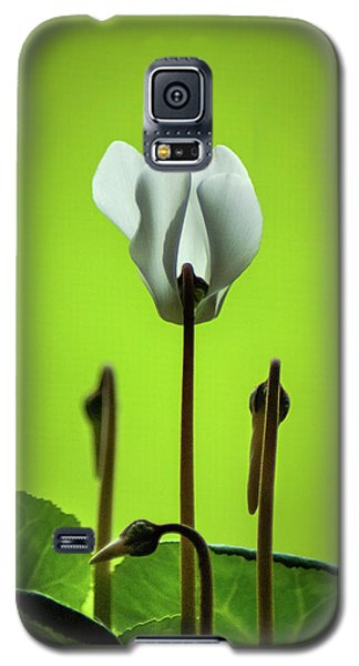 Galaxy S5 Case featuring the photograph Soft Touch by Bill Pevlor