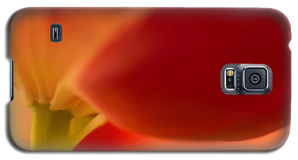Soft Tulip Galaxy S5 Case