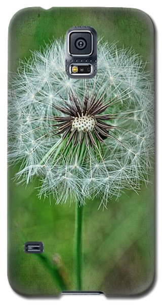 Galaxy S5 Case featuring the photograph Softly Sitting by Jan Amiss Photography