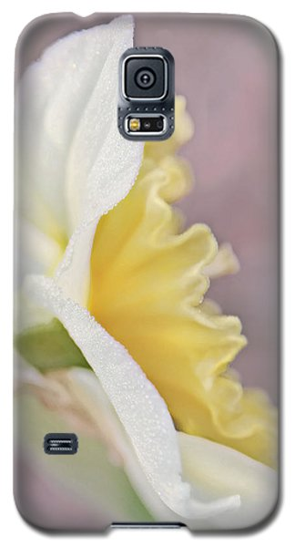 Galaxy S5 Case featuring the photograph Softness Of A Daffodil Flower by Jennie Marie Schell