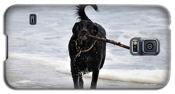 Soggy Stick Galaxy S5 Case