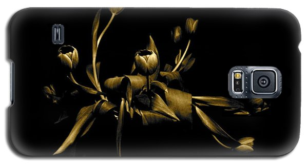 Galaxy S5 Case featuring the photograph Solid Gold by Danica Radman