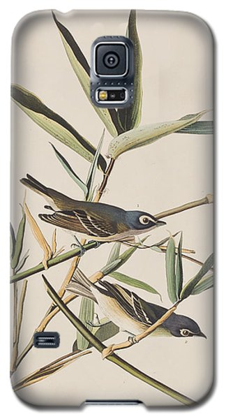 Solitary Flycatcher Or Vireo Galaxy S5 Case