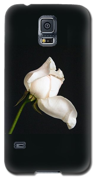 Solitary Rosebud Galaxy S5 Case by Margie Avellino