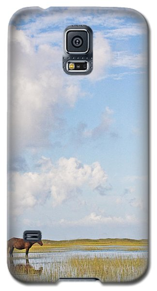Galaxy S5 Case featuring the photograph Solitary Wild Horse by Bob Decker