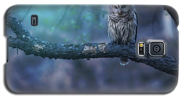 Owl Galaxy S5 Case - Solitude - Square by Rob Blair