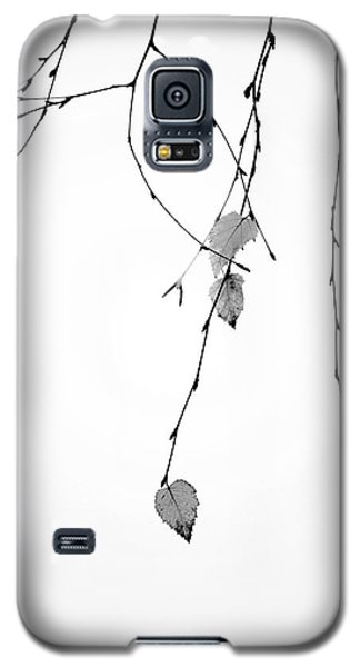 Galaxy S5 Case featuring the photograph Solo by Rebecca Cozart