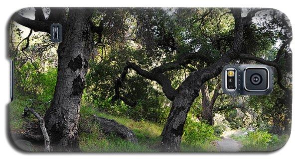 Solstice Canyon Live Oak Trail Galaxy S5 Case
