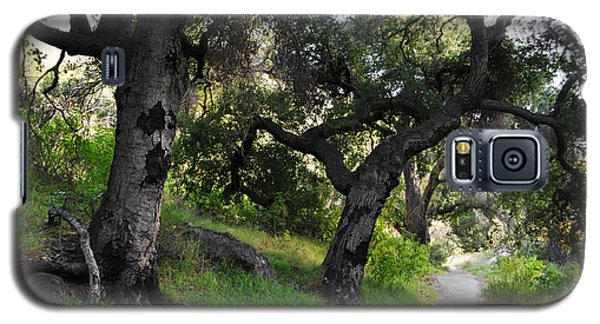 Solstice Canyon Live Oak Trail Galaxy S5 Case by Kyle Hanson