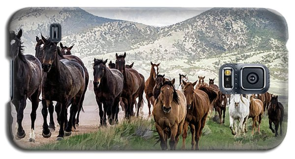 Sombrero Ranch Horse Drive, An Annual Event In Maybell, Colorado Galaxy S5 Case