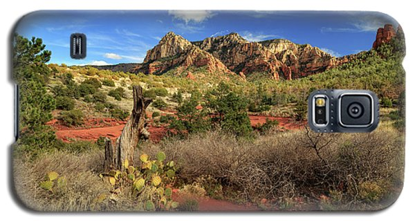 Galaxy S5 Case featuring the photograph Some Cactus In Sedona by James Eddy