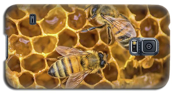 Galaxy S5 Case featuring the photograph Some Of Your Beeswax by Bill Pevlor