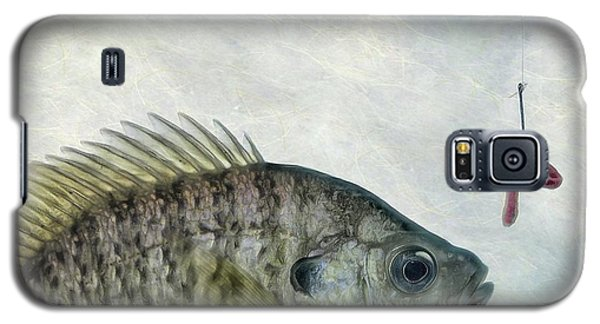 Galaxy S5 Case featuring the photograph Something Fishy by Mark Fuller