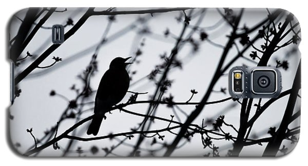 Galaxy S5 Case featuring the photograph Song Bird Silhouette by Terry DeLuco