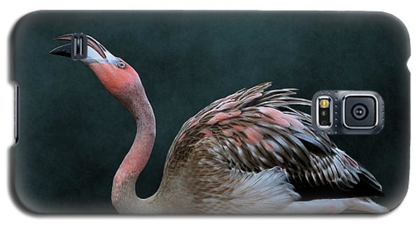 Song Of The Flamingo Galaxy S5 Case