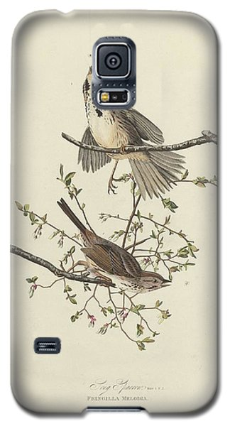 Song Sparrow Galaxy S5 Case by Dreyer Wildlife Print Collections