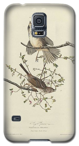 Song Sparrow Galaxy S5 Case by Rob Dreyer