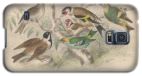 Songbirds Galaxy S5 Case by Rob Dreyer