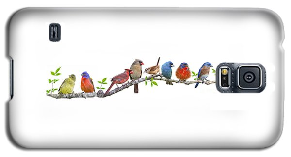 Songbirds On A Leafy Branch Galaxy S5 Case
