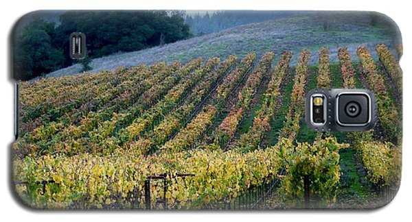 Sonoma County Vineyards Near Healdsburg Galaxy S5 Case