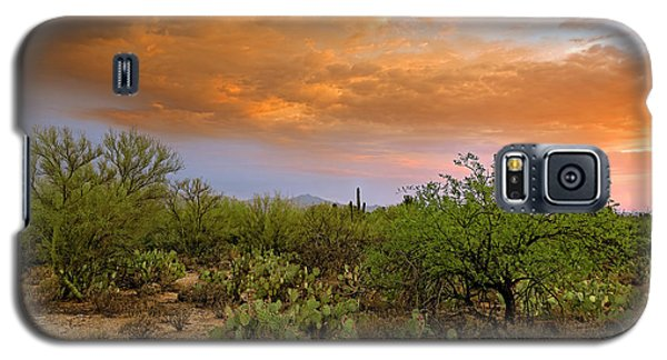 Galaxy S5 Case featuring the photograph Sonoran Desert H11 by Mark Myhaver