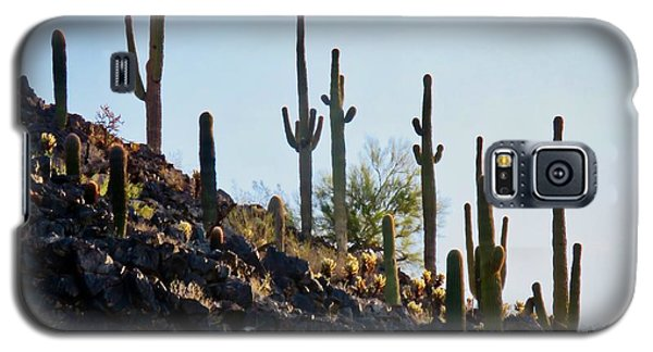 Sonoran Desert Saguaro Slope Galaxy S5 Case