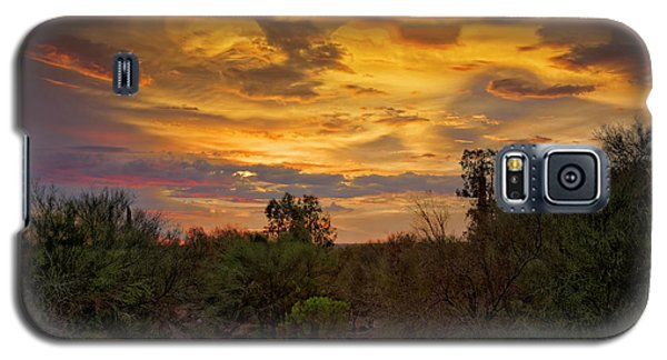 Galaxy S5 Case featuring the photograph Sonoran Sonata H01 by Mark Myhaver