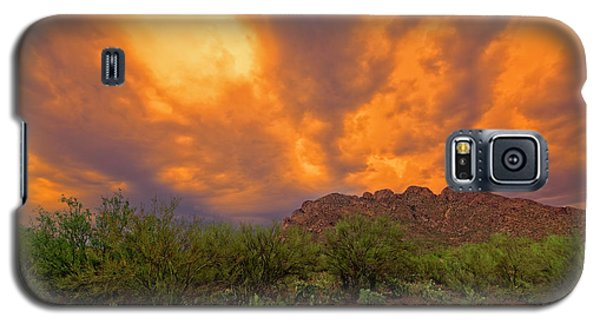 Galaxy S5 Case featuring the photograph Sonoran Sonata H16 by Mark Myhaver