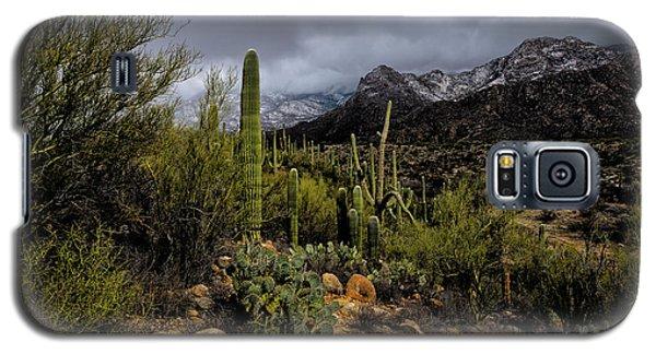 Sonoran Winter No.1 Galaxy S5 Case