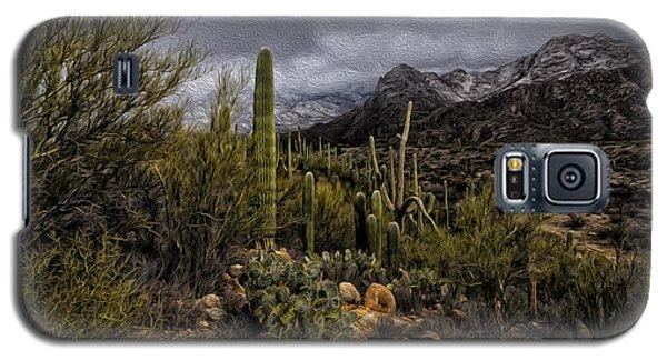 Sonoran Winter No.3 Galaxy S5 Case