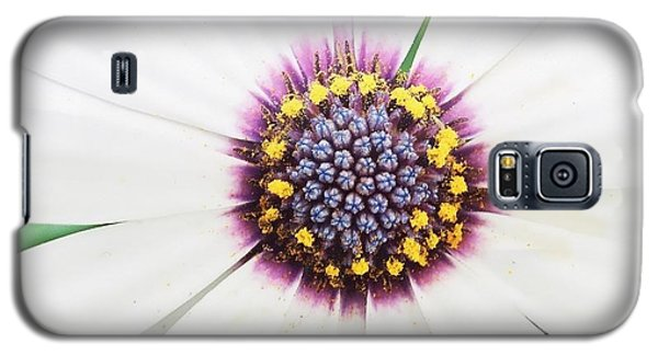 Soprano White Galaxy S5 Case