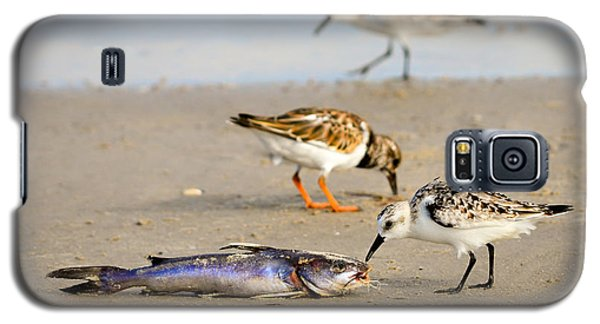 Galaxy S5 Case featuring the photograph Sorry Buddy by Debra Martz