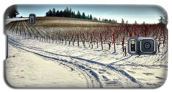 Soter Vineyard Winter Galaxy S5 Case by Jerry Sodorff
