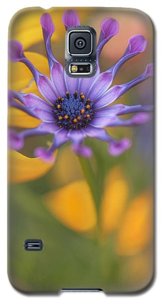 South African Daisy Galaxy S5 Case
