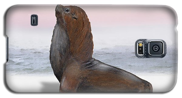 South American Fur Seal Arctocephalus Australis Male - Marine - Seebaer  Galaxy S5 Case