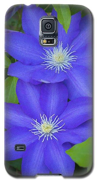South Carolina Color Galaxy S5 Case