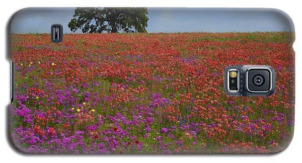 South Texas Bloom Galaxy S5 Case