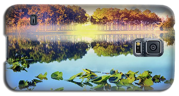Galaxy S5 Case featuring the photograph Southern Beauty by Debra and Dave Vanderlaan