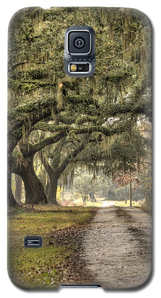 Southern Drive Live Oaks And Spanish Moss Galaxy S5 Case