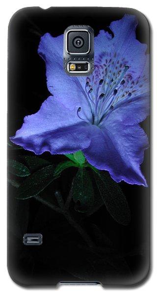 Southern Indica Azalea 1 Galaxy S5 Case