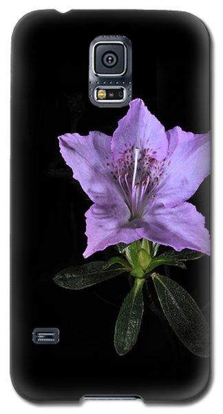 Southern Indica Azalea 2 Galaxy S5 Case