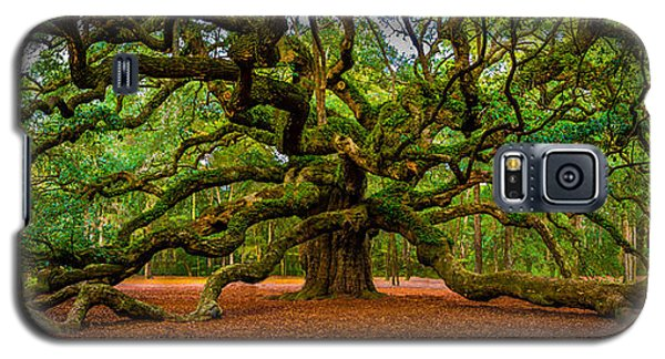 Angel Oak In Charleston Galaxy S5 Case