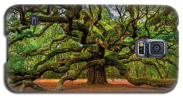 Angel Oak In Charleston Galaxy S5 Case