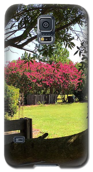 Southern Radiance  Galaxy S5 Case