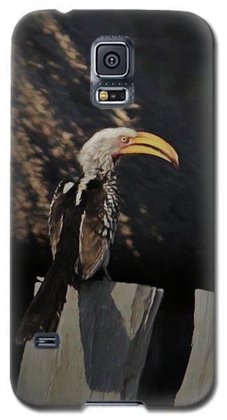 Southern Yellow Billed Hornbill Galaxy S5 Case by Ernie Echols