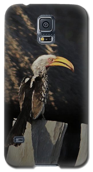 Southern Yellow Billed Hornbill Galaxy S5 Case