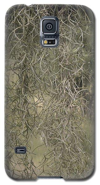 Galaxy S5 Case featuring the photograph Spainish Moss by Viktor Savchenko